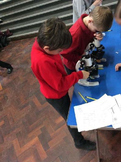 Northfield STEM Day